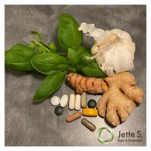 husapotek, diverse piller, hvidløg, ingefær, basilikum, gurkemeje