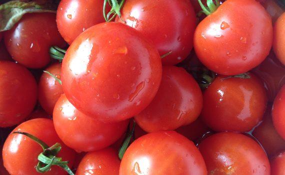 mange-roede-tomater