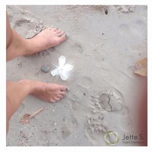 fødder_sand